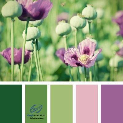 Сочетание цветов, изображение №4