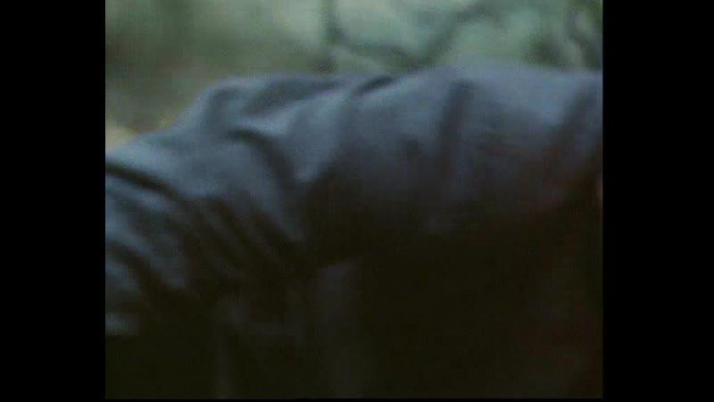 В лесах под Ковелем 1984 часть 3