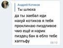 Андрей Котиков фотография #42