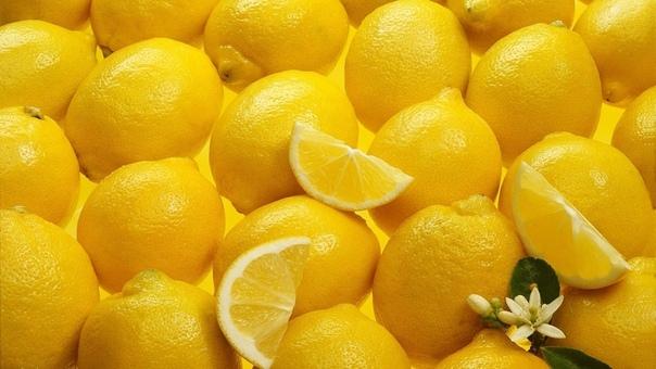 как ухаживать за лимоном в квартире