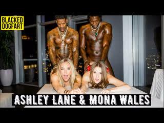 Ashley lane & mona wales 💖 blackedraw