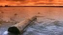 «Таинственная Россия» «Курганская область. Охота на русалку»