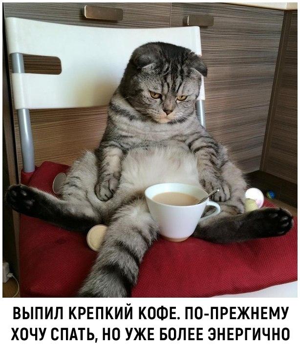 Доброе утро, Волжский ❤️