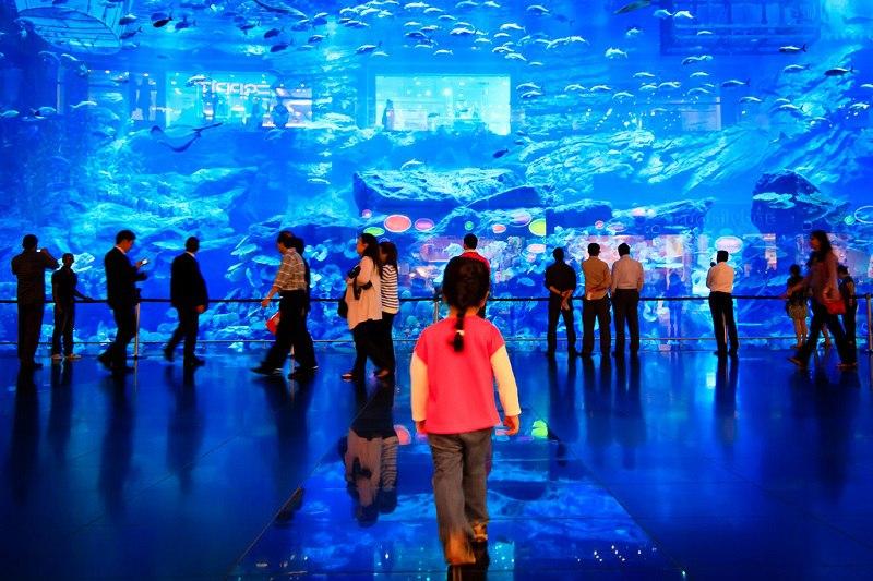 Крупнейший в мире аквариум в ТРЦ Дубай Молл, ОАЭ, изображение №3
