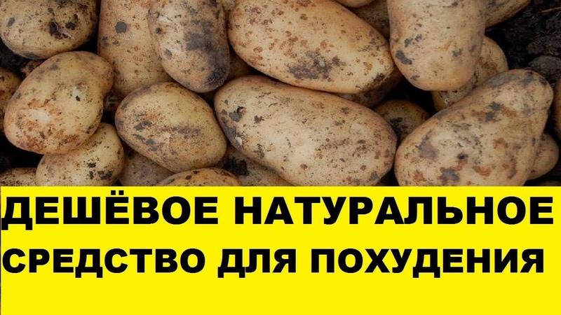 Магия похудения картошка отзывы