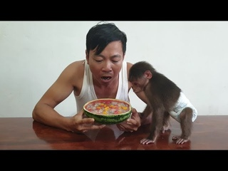 Baby Monkey | Doo Tastes Fruits Jelly In Watermelon Made By Mom
