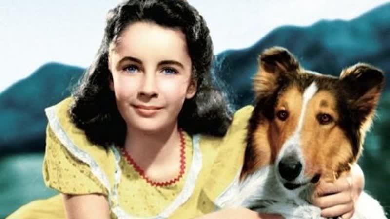 Храбрость Лесси (1946)