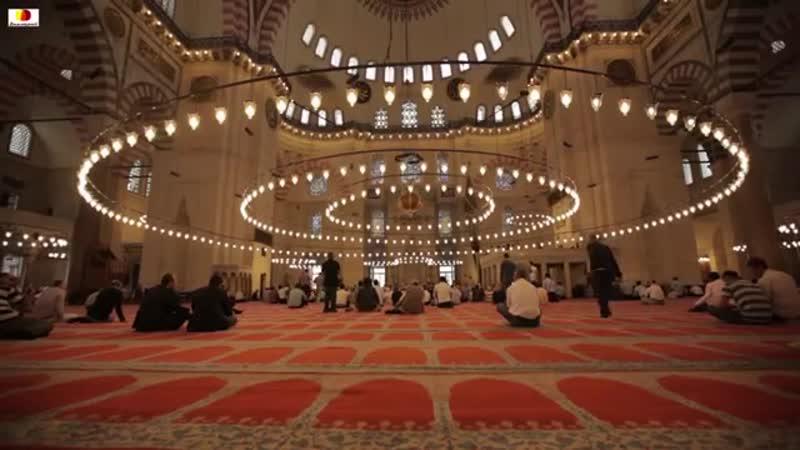 Салават на Пророка ﷺ и польза от чтения салавата _ шейх Мухаммад ас-Сакаф
