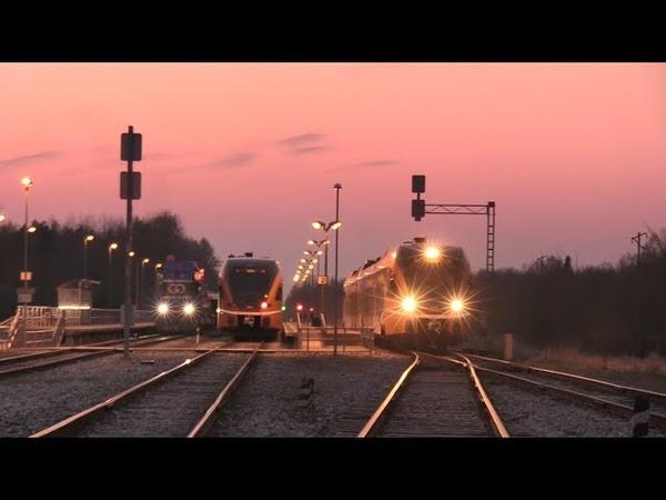 Штадлерские дизель поезда в закате на ст. Лелле Stadler DMU s during sunset at Lelle