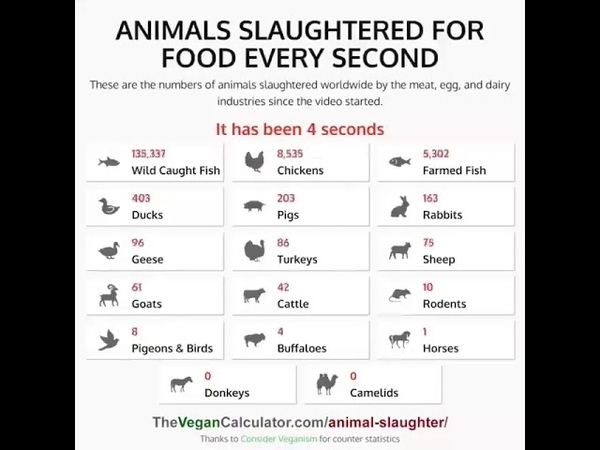 Animals slaughtered for food every second GoVegan