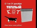 Тёплый кот смешная реклама
