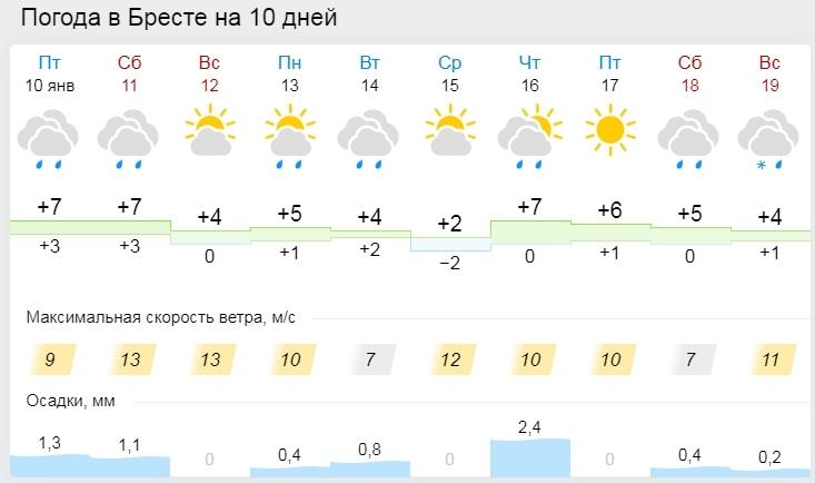 Белгидромет: 2019 год в Беларуси был аномально теплым