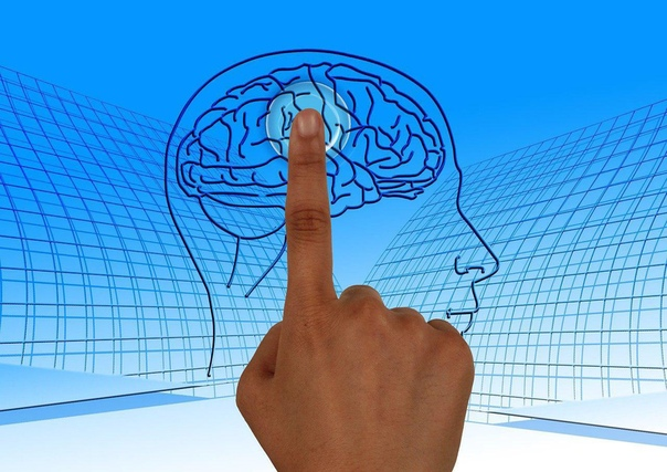 Настроение зависит от работы мозга
