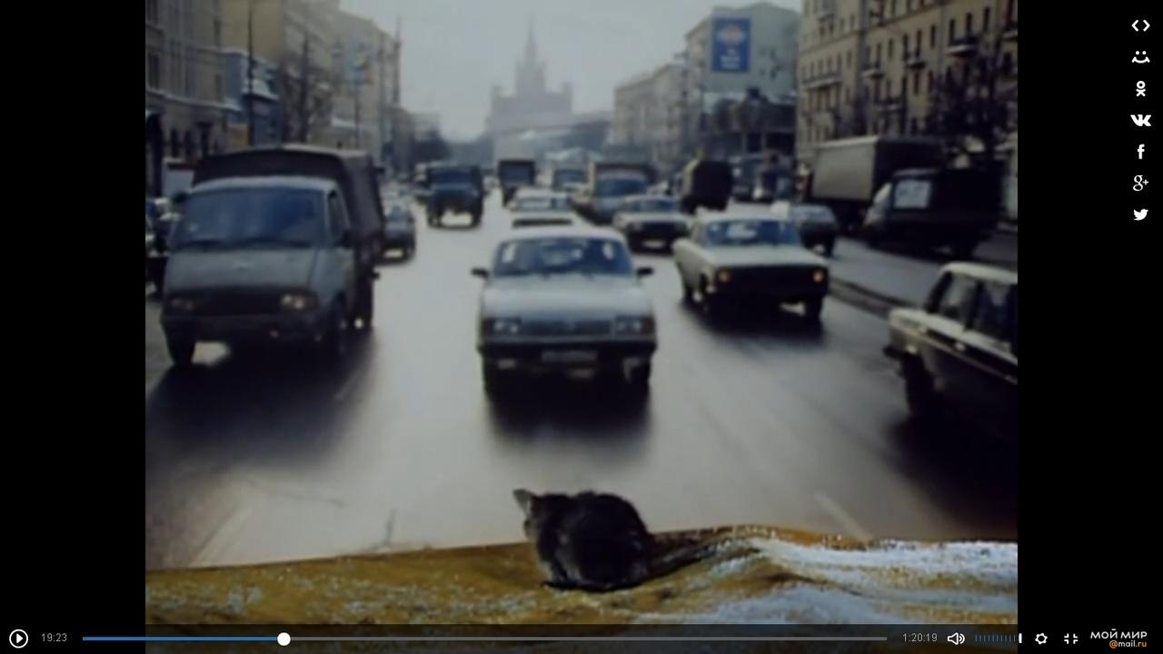 Фильм Котёнок Ивана Попова, 1996. Пересмотрел спустя годы и нахлынула