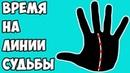 ДАТИРОВКА по ЛИНИИ СУДЬБЫ время на линии Судьбы / хиромантия / Кладезь Хиромантии