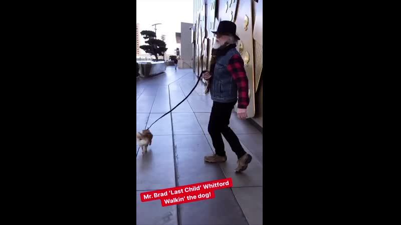 Brad Witford walkin' dog