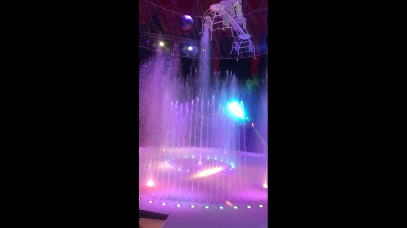 Волшебные фонтаны цирковое представление