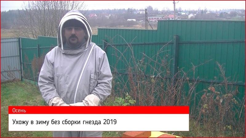 ❄ Ухожу в зиму без сборки гнезда пчёл ❄