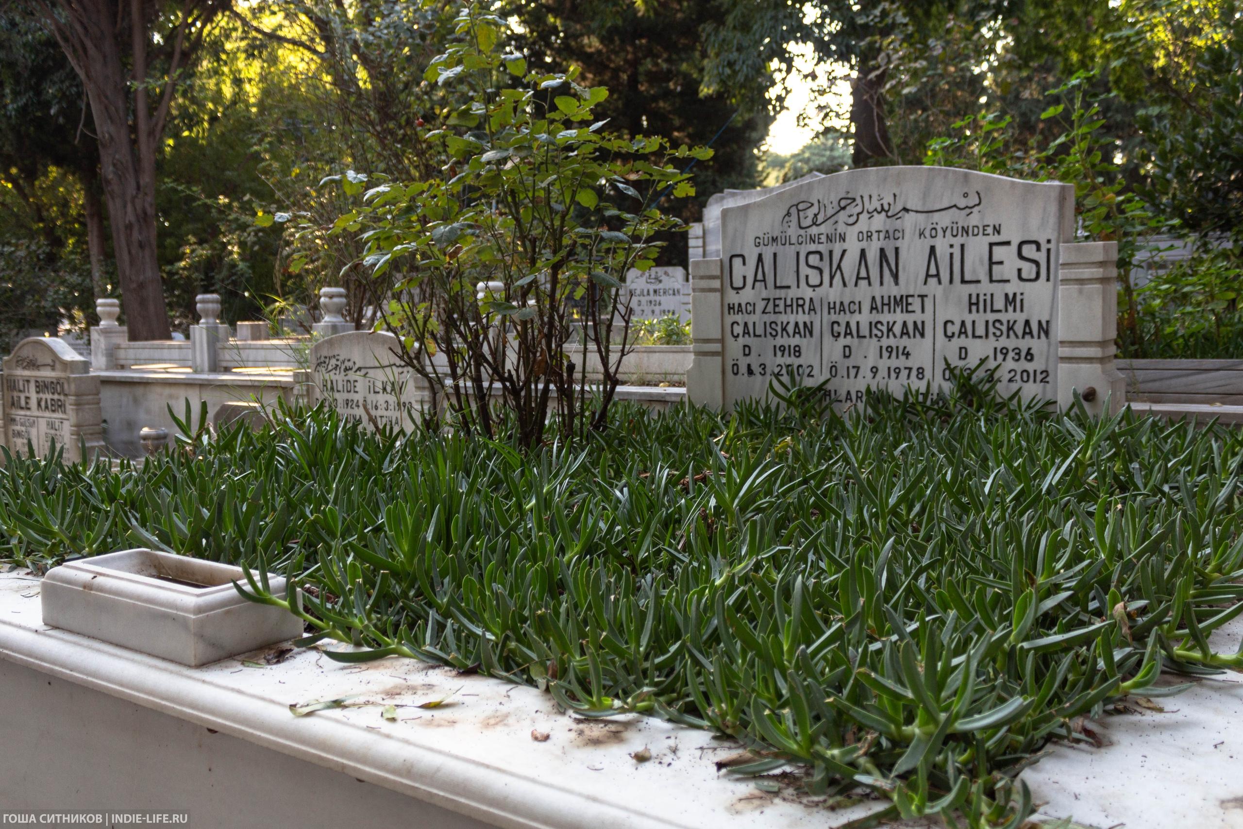 Кладбище Стамбул