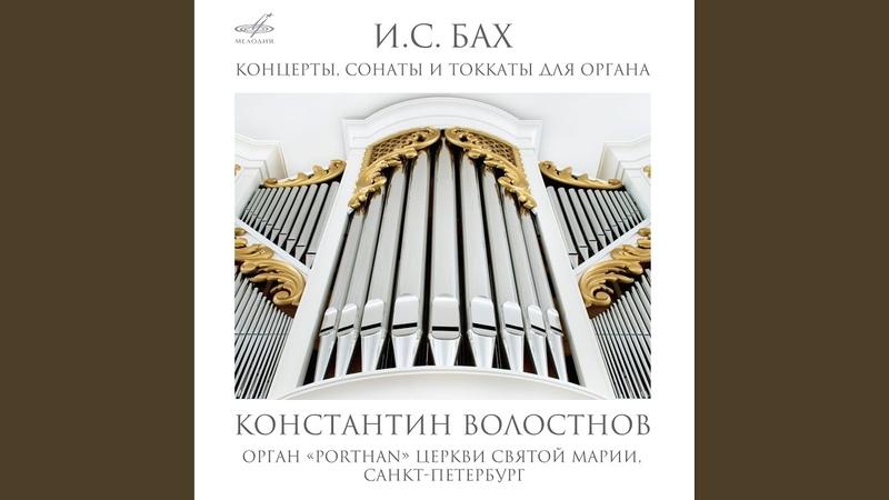 Соната No. 4 ми минор, BWV 528 II. Andante