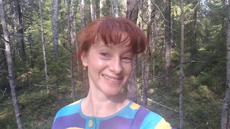 В карельском лесу, недалеко от Петрозаводска 18.08.19