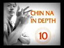 Chin Na in Depth 3 2 10 Chinese Grappling