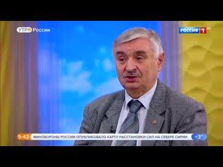Советник главы Россельхознадзора рассказал, почему в стране массово гибнут пчелы, после чего был уволен