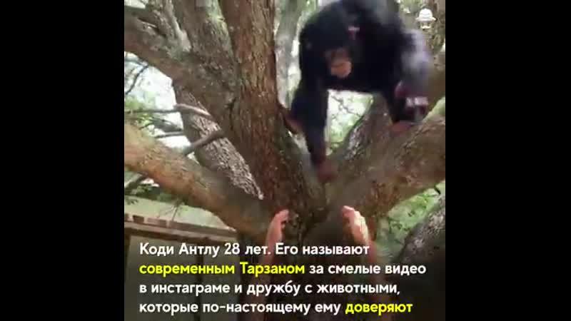 VIDEO-2019-10-24-18-52-07.mp4