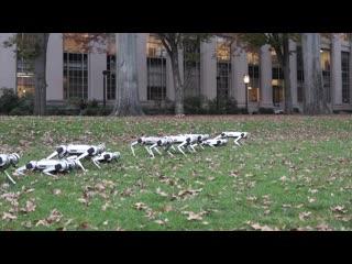 Инженеры MIT научили роботов Mini Cheetah играть с мячом