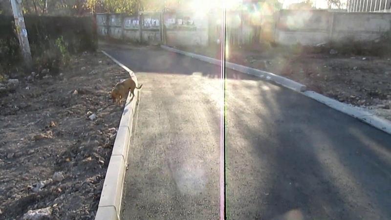 Злой Лекарь ещё раз о дорогах в городе Семилуки в 2019 году