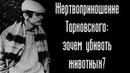 Жертвоприношение Тарковского: зачем убивать животных?