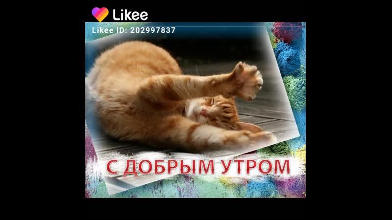 Like_2019-07-28-09-14-44.mp4