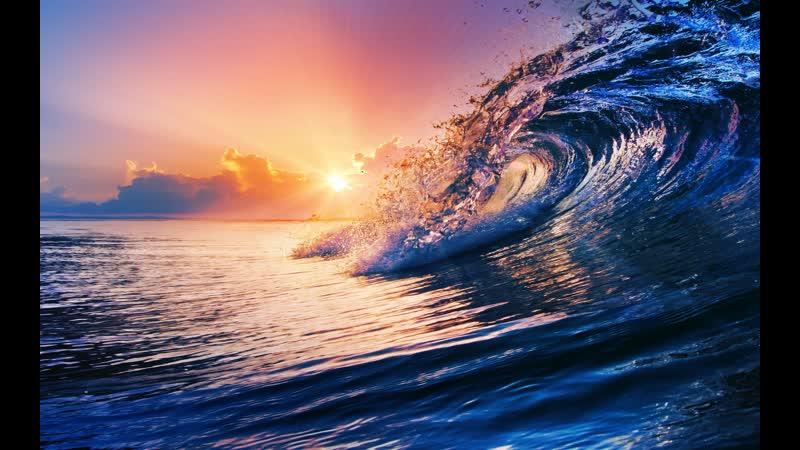 BBC Земля Мощь планеты 4 Океаны 2007