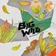 Big Wild feat. iDA HAWK - Invincible