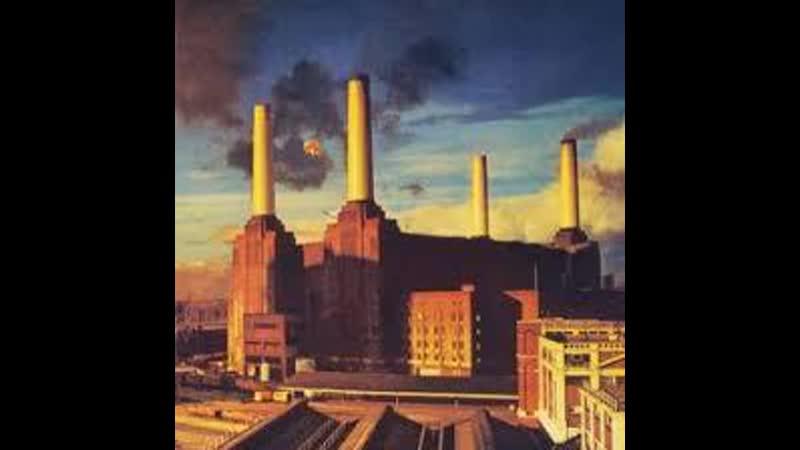 Pink Floyd 1977 Animals