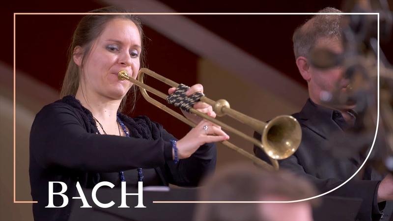 Bach - Easter Oratorio: Kommt, eilet und laufet BWV 249 - Van Veldhoven | Netherlands Bach Society