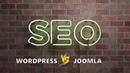 Joomla или WordPress что насчет SEO (Александр Куртеев)
