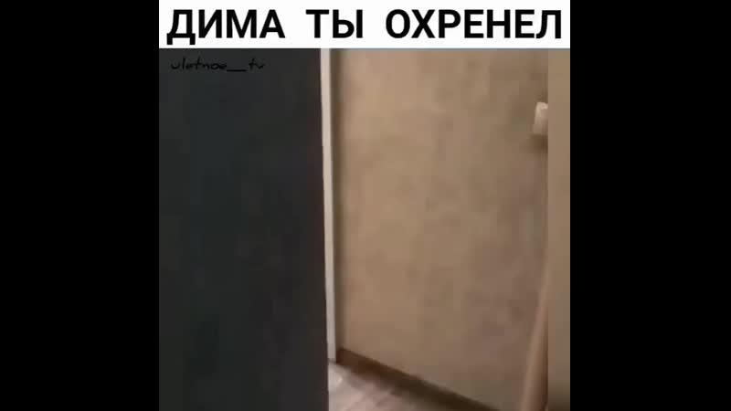 Дима, ты охренел!