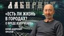 ЛАБИРИНТ Есть ли жизнь в городах о вреде излучения Юрий Андреевич Фролов