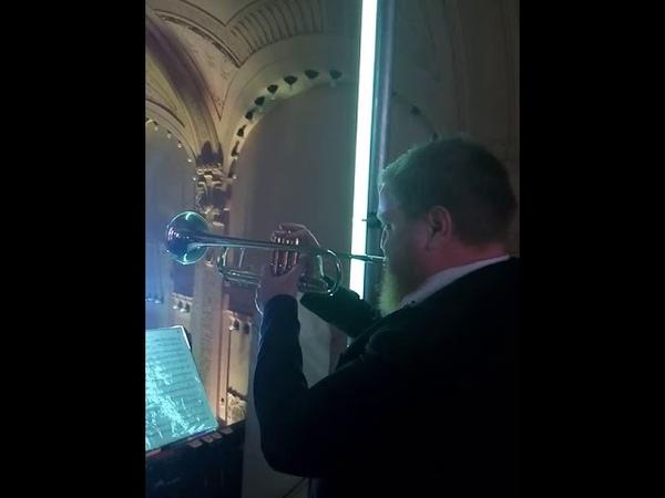 Olympic Brass 🎺 Jazz День Рождения Гостиницы Европа