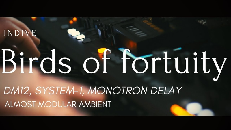 Birds of fortuity Deepmind 12 System 1 Monotron Delay Almost modular ambient
