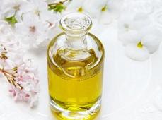 В Липецкой области будут производить высокоолеиновое растительное масло
