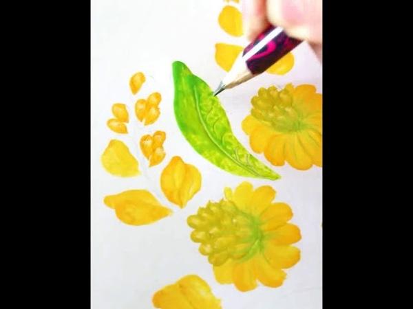 Goldenrod Solidago gigantea Draw flowers Botanical illustration