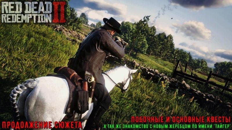 ♢ 🆁🅳🆁 🅸🅸 ➫ Red Dead Redemption II ➫ Глава 3 ➫ Основные и побочные квесты - продолжение ♢
