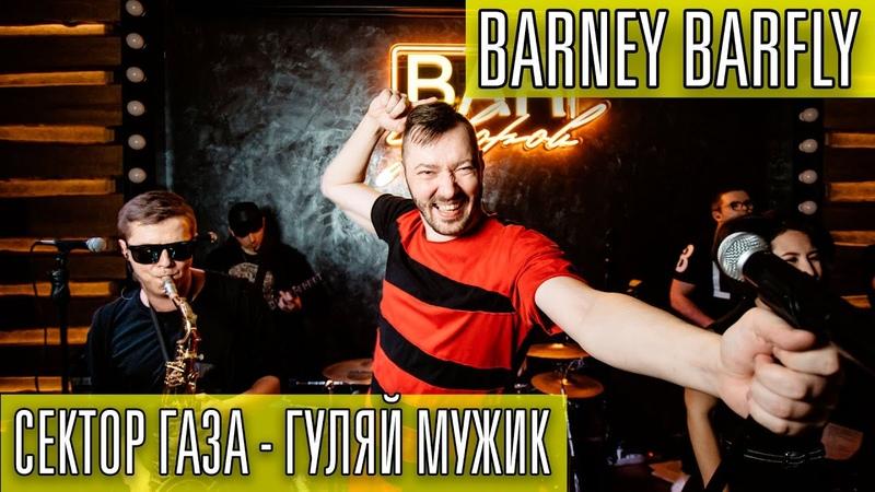 Сектор Газа Гуляй мужик cover by BARNEY BARFLY