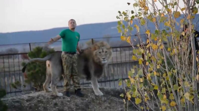 В крымской саванне с человеком львом In the Crimean savannah with the lion man