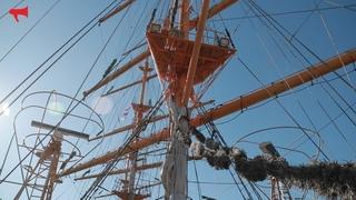 """Учебное парусное судно """"Паллада"""" отправилось в свою третью кругосветную экспедицию"""
