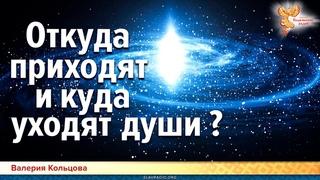 Откуда приходят и куда уходят души? Валерия Кольцова