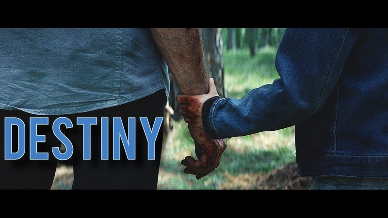 Multifandom || Destiny