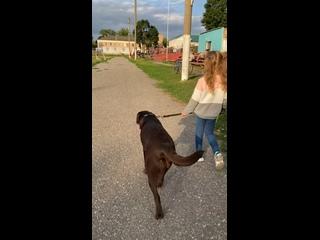 Video by Natasha Golubkova